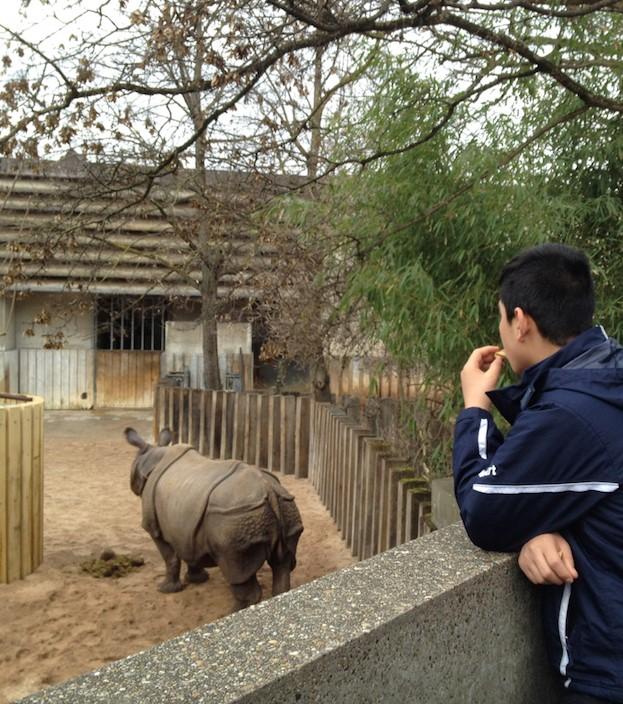 ahmad mit Nashorn